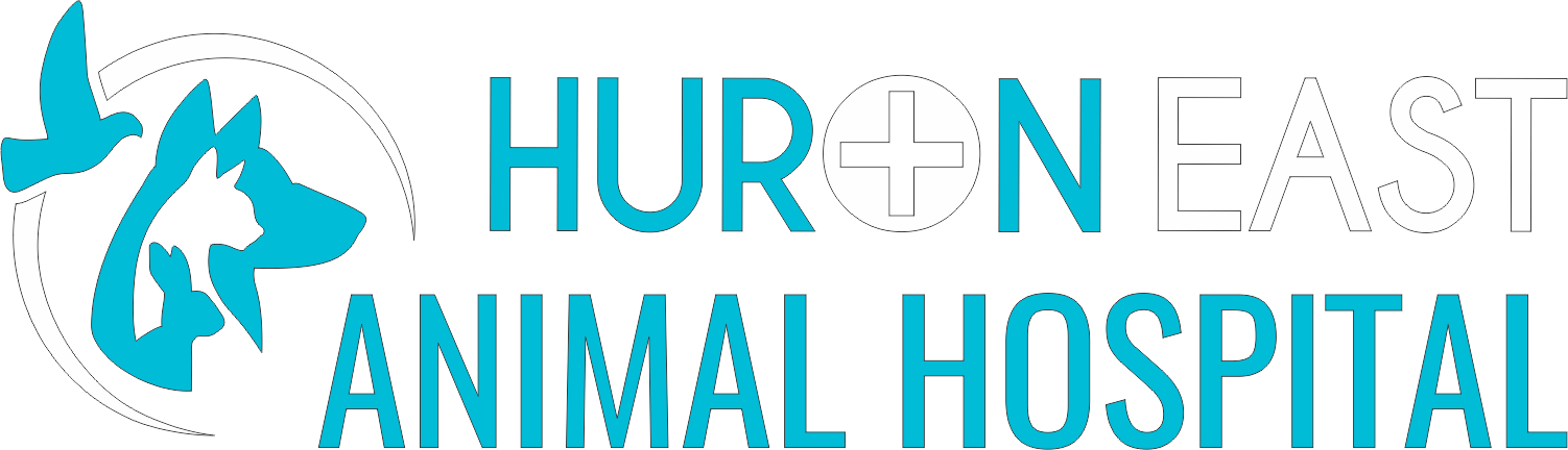 Huron East Animal Hospital